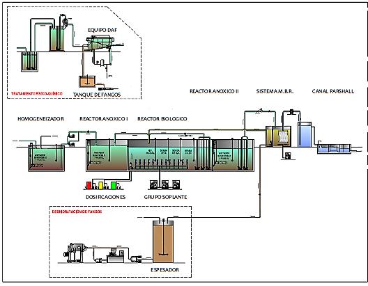 Depuración en plantas de subproductos cárnicos. Línea de procesos habitual