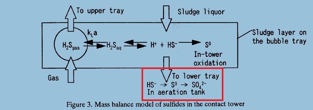Esquema simplificado de la absorción del sulfuro en el fango activo